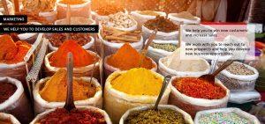 multi -coloured spices