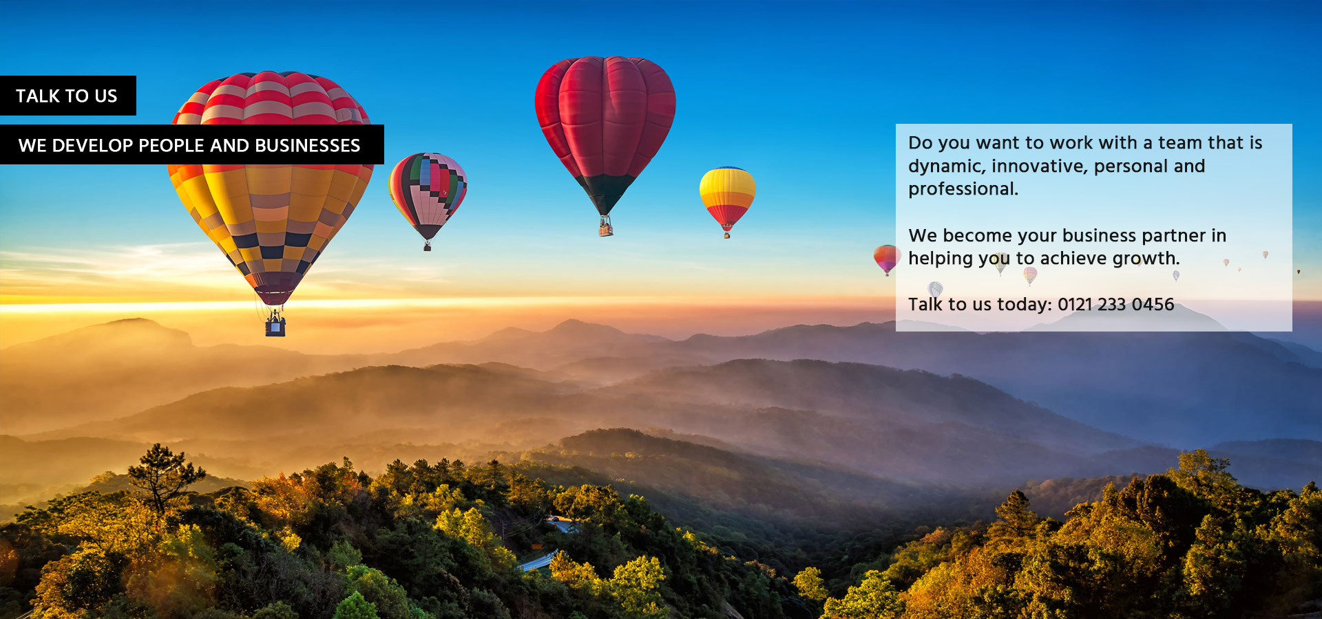 talk to us - tax advisor - hot air balloons