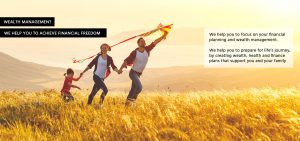 wealth management - family flying a kite in long grass field
