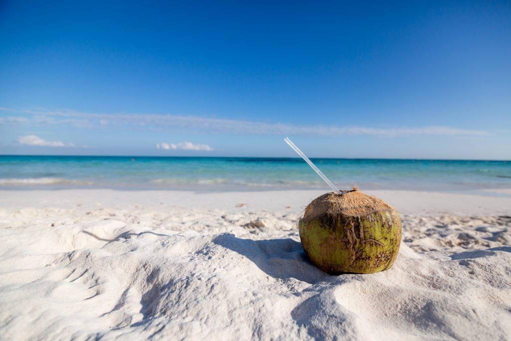 business funding - coconut on a beach with a straw to drink coconut