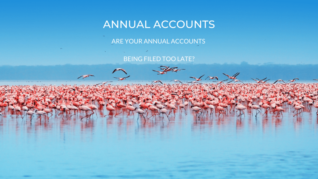 annual accouts filing poster with flamingos